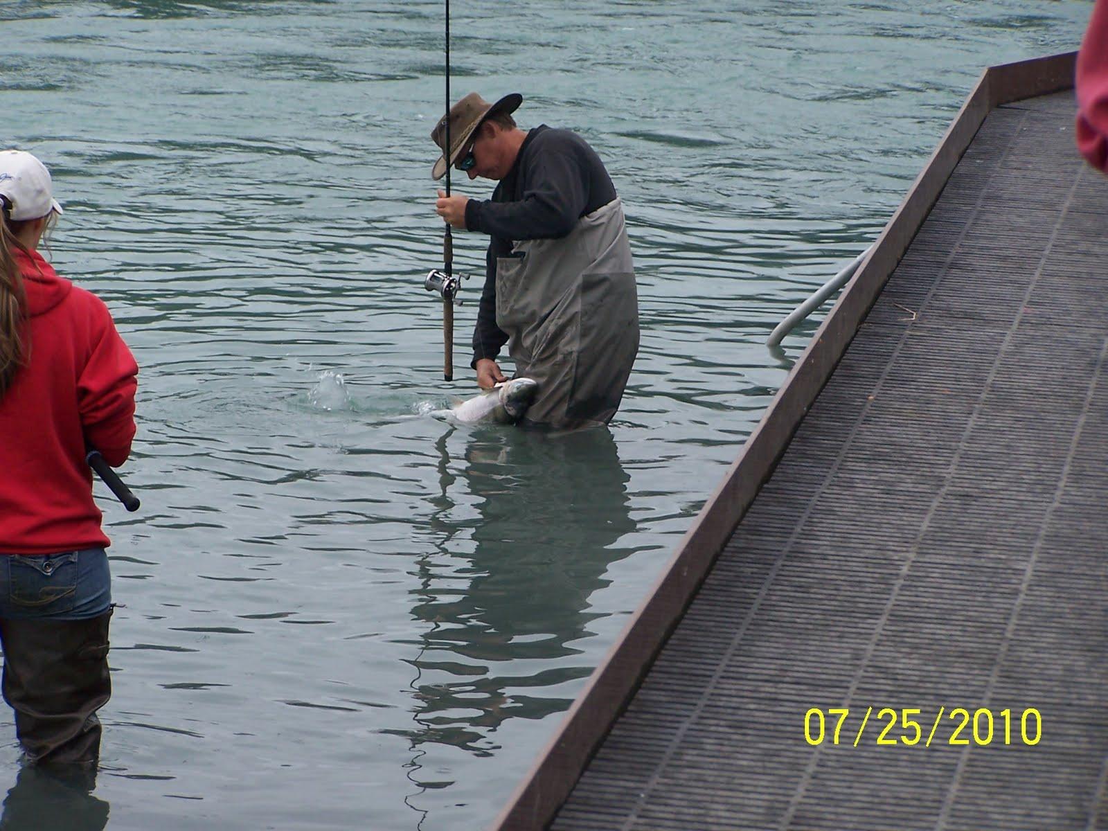 Dan and donna kenai river walk soldatna july 25 2010 for Kenai river fish counts