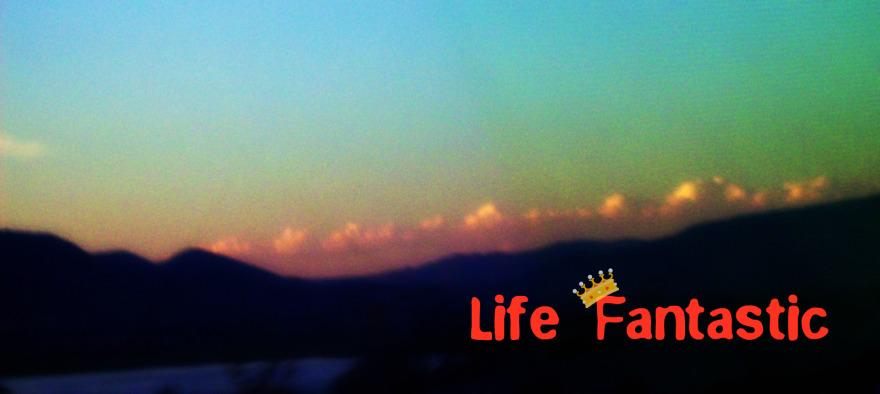 Life Fantastic