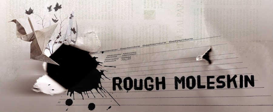 Rough Moleskin