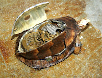steampunk taxidermy, fixed - turtle