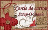 Le cercle SOM