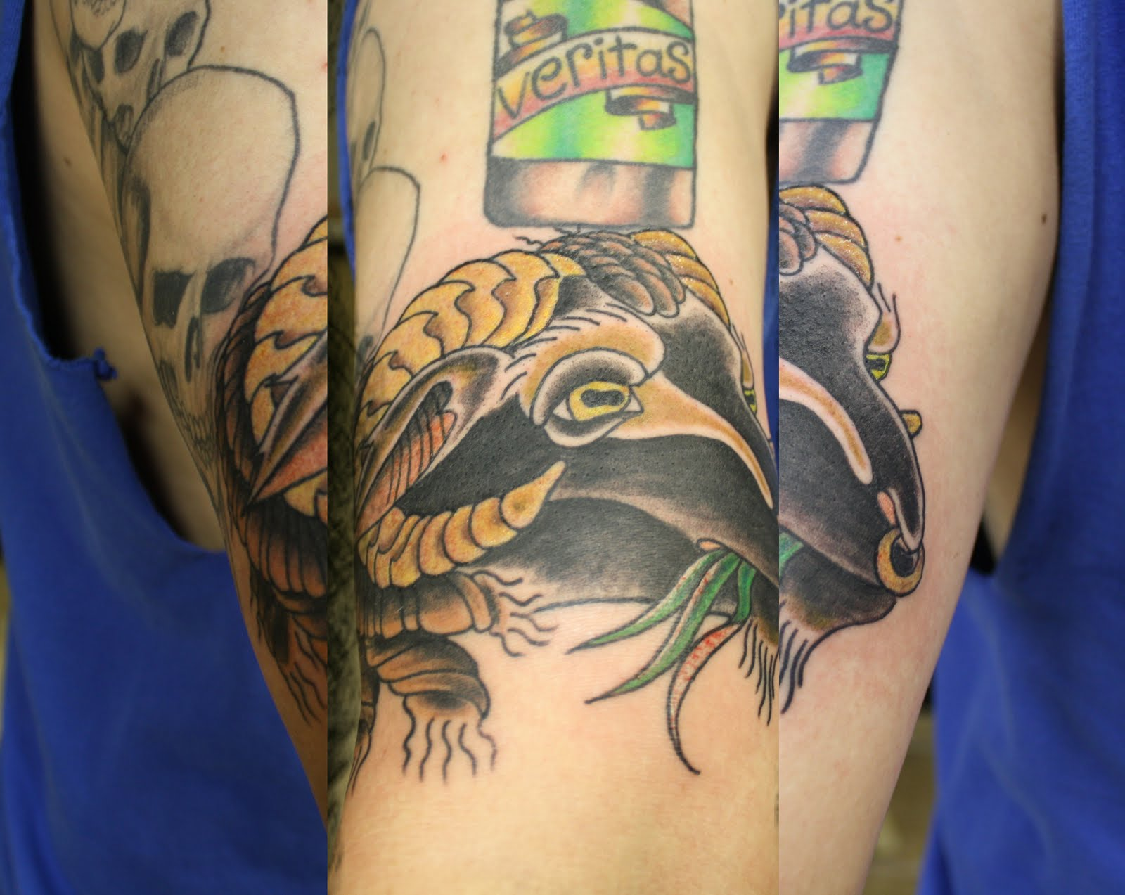 Fettbuilt black sheep tattoo for Black sheep tattoo