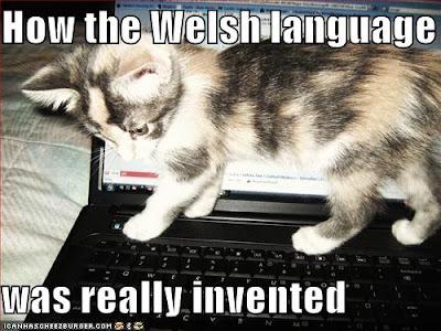 http://4.bp.blogspot.com/_c4nAvpKp9iQ/SiwTPXrQ4lI/AAAAAAAAC-A/AKgceEKS6yE/s400/funny-pictures-kitten-invents-welsh-language.jpg