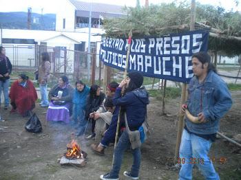 libertad al pueblo mapuche