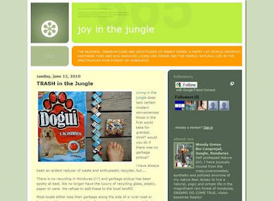 Joy in the Jungle blog