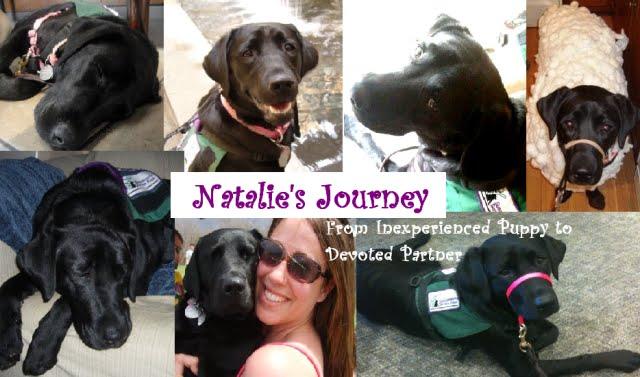 Natalie's Journey