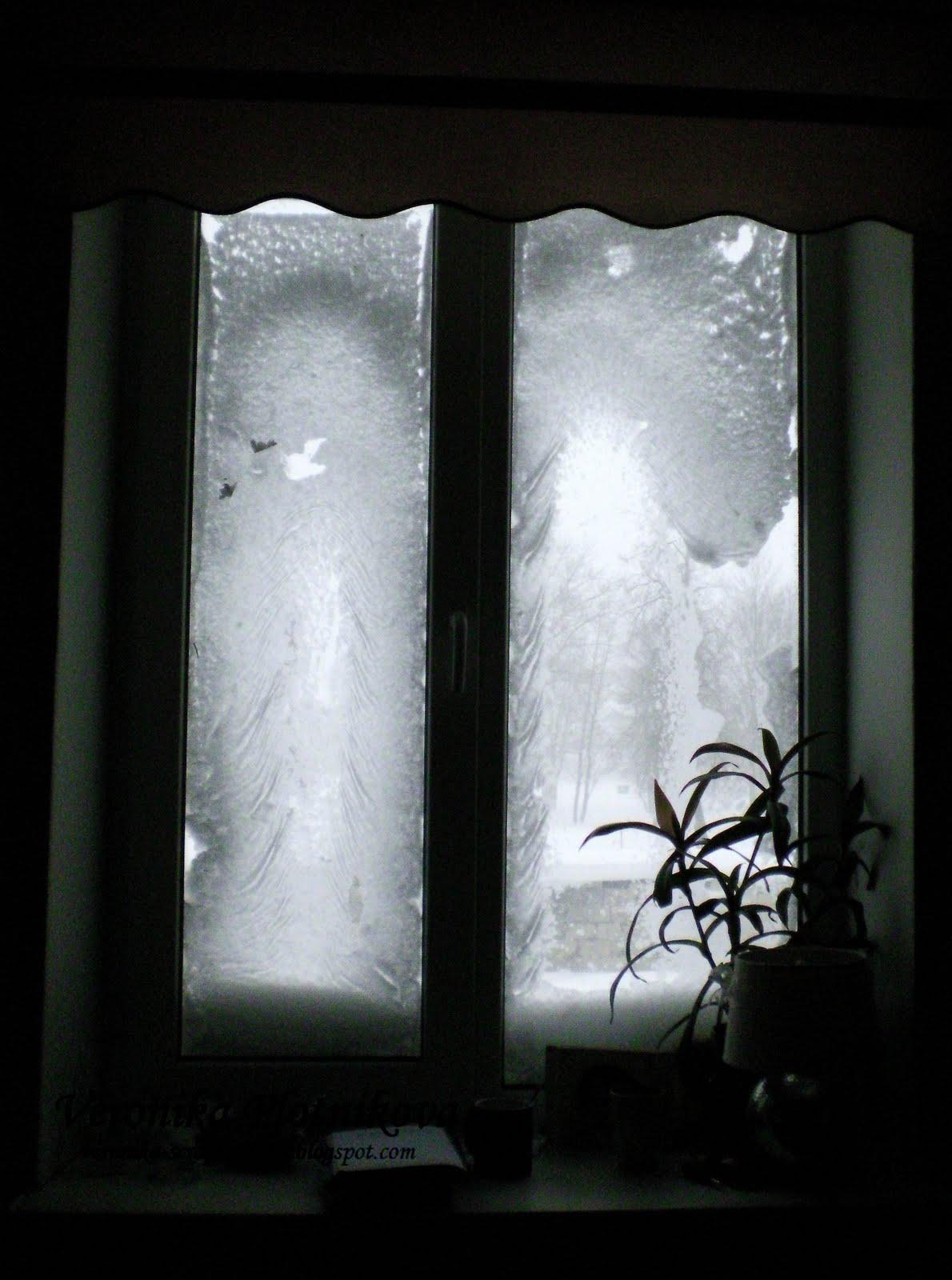 Вот такая у нас нынче зима снежная