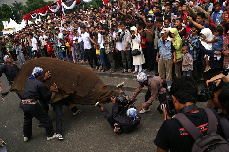Banteng Ngamuk. 2008