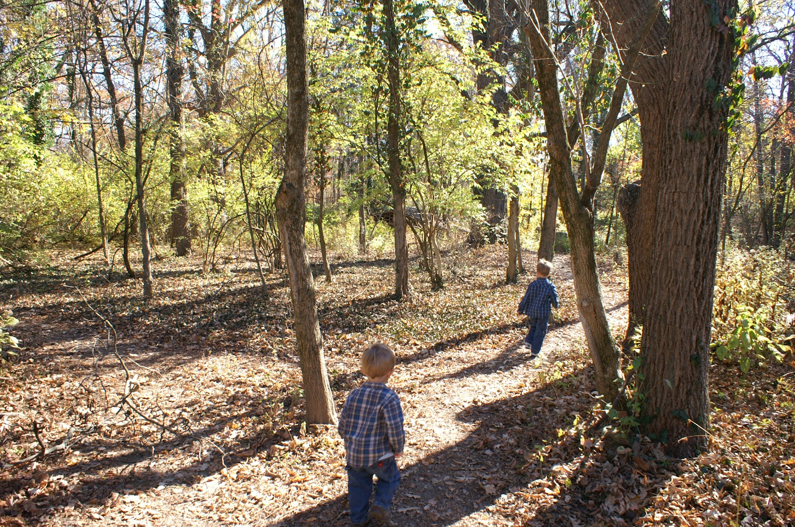 Two Tykes on a Hike: Trail Tale 2: Lindner Park, McCullough Estate ...