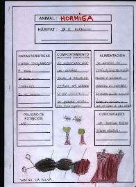Fichas temáticas sobre insectos.