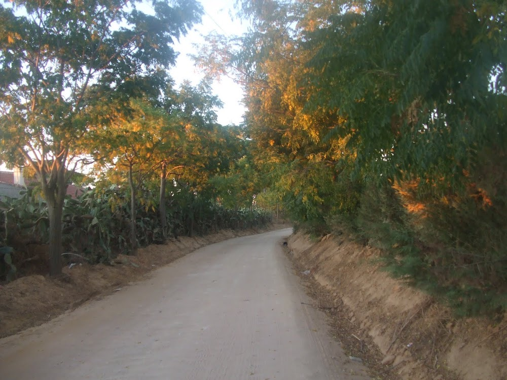 camino de carmona