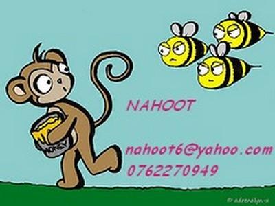 NAHOOT DESIGN