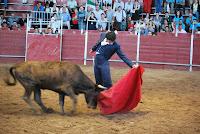 GALERIA, FAENA FERIA DEL TORO Y EL CABALLO 2010 DE BADAJOZ