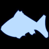 groovyで描画した魚型