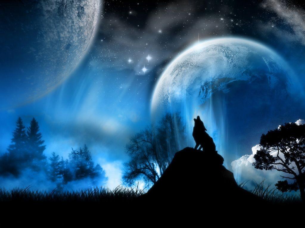 http://4.bp.blogspot.com/_cDvR1-vVsAA/TQFh4vZl7JI/AAAAAAAAAhg/htJH6WFmhE4/s1600/Lobo+solitario.jpg