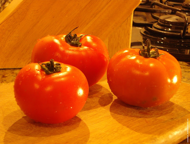 Ode To Tomatoes 05
