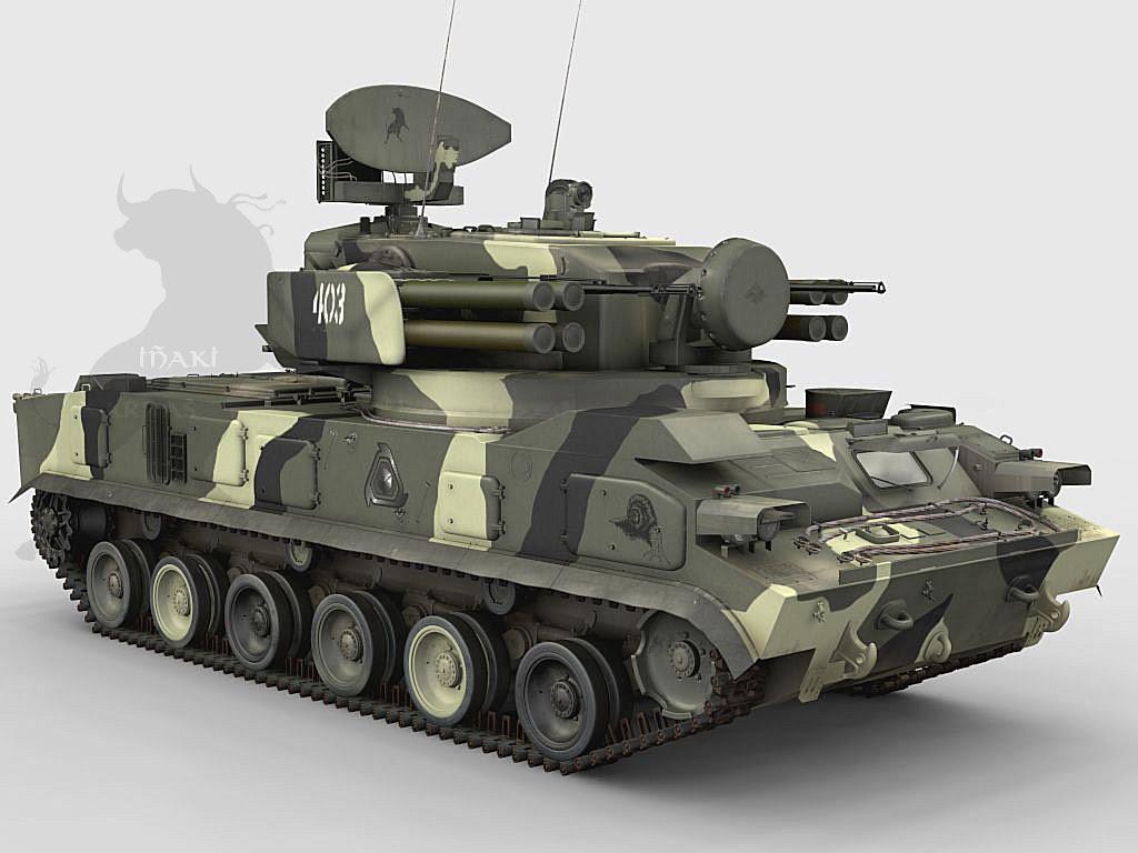 صفقات جديدة للمغرب مع روسيا 2s6M+Tunguska+