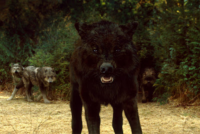 Fitxa William Darkwolfv