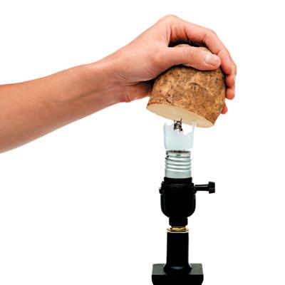 1 Renovation Remove the Base of a Broken Light Bulb