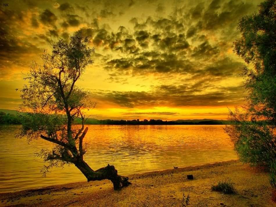 La naturaleza es hermosa taringa for Naturaleza hermosa