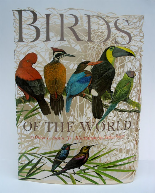 Birds of the World ~ Jacket front