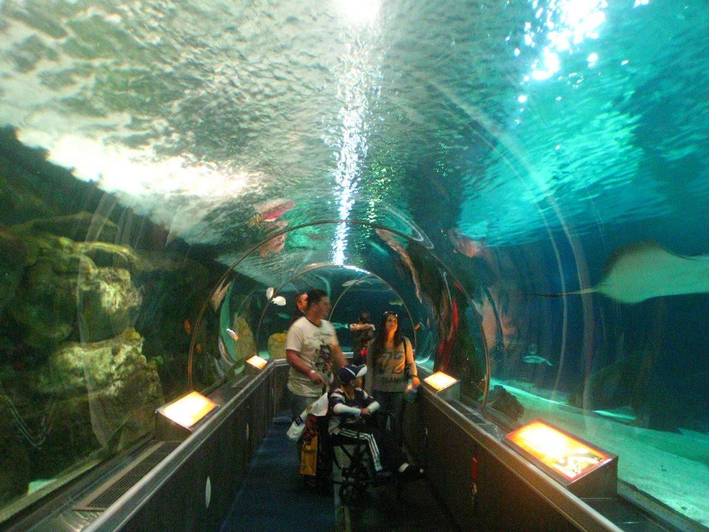 city adventure guide water aquarium in bloomington