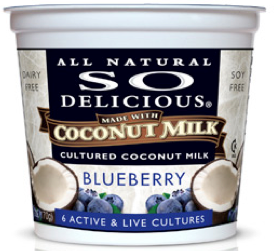 low calorie coconut yogurt