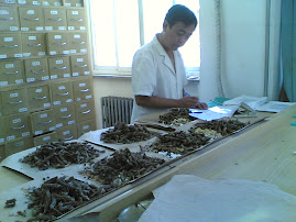 Viagem  China - The Huguost Hospital of Chinese Medicine