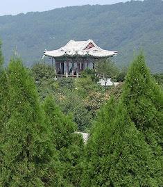 Viagem á China - Colinas Perfumadas