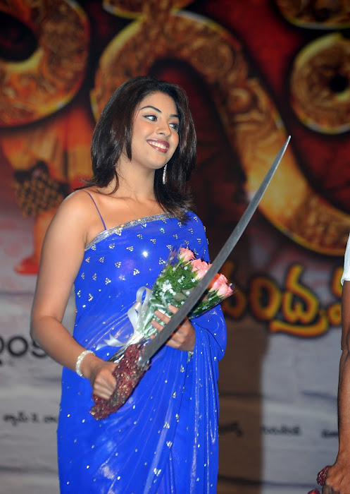 richa gangopadhyay new n spicy in blue saree hot photoshoot