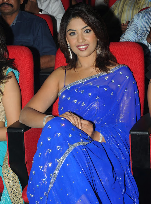 richa gangopadhyay new n spicy in blue saree glamour  images