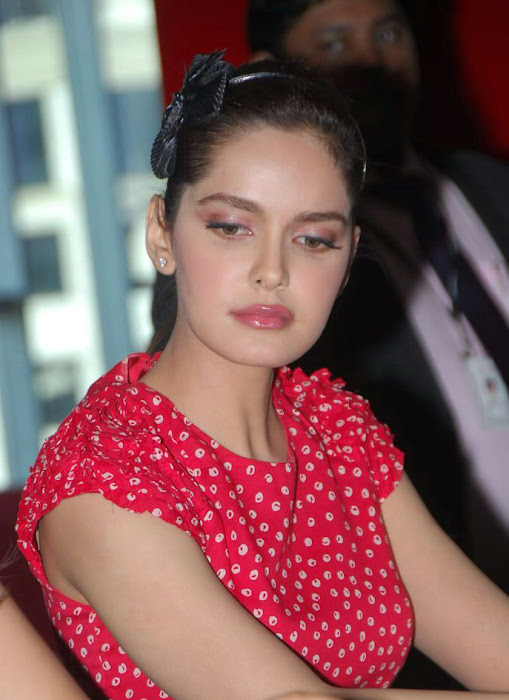 shazahn padamsee new from event photo gallery