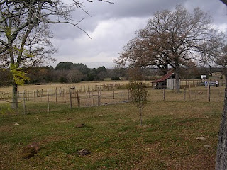 Aavalon Farm, TX