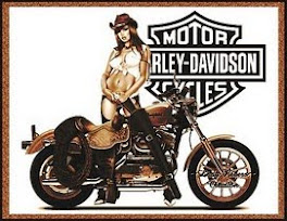 The Harley Davidson Motorcycles