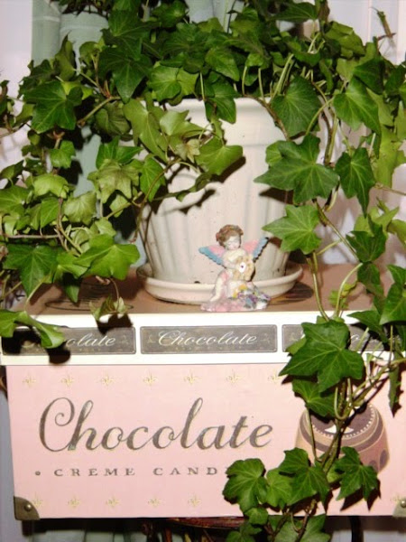 Ivy & Chocolate!