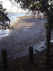Hermanus Lagoon Sewerage Scandal