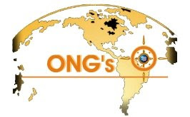 el problema de las ongs: