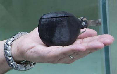 Peixe robô