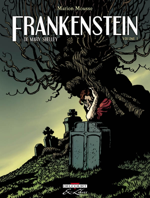 Frankenstein by Mary Shelley essay