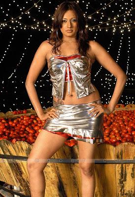 brinda parekh, brinda parekh spicy gallery, bhuvnaeswari. babilona sexy pica, bhuvaneswari sexy pics,  bhuvaneshwari sexy pics, brinda parekh latest photoshoot