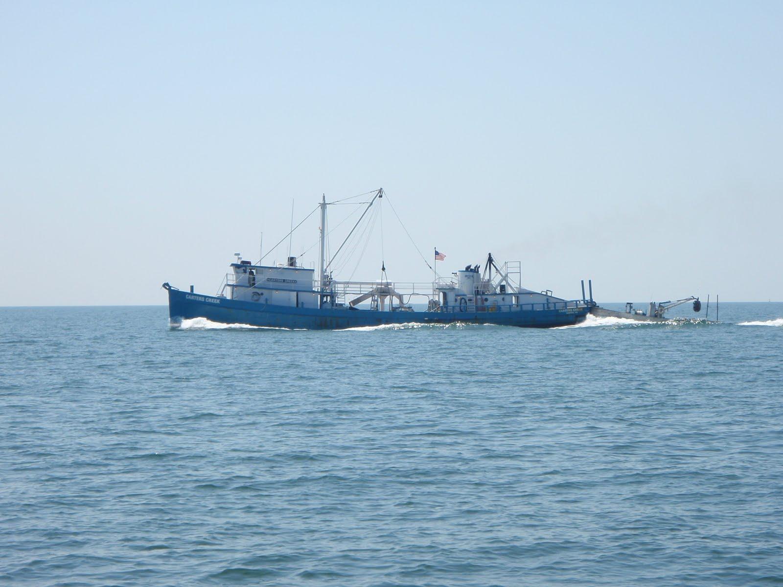 Saliander october 2010 for Chesapeake bay fishing