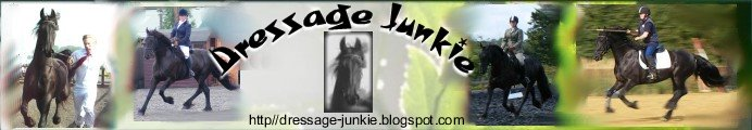 Dressage Junkie