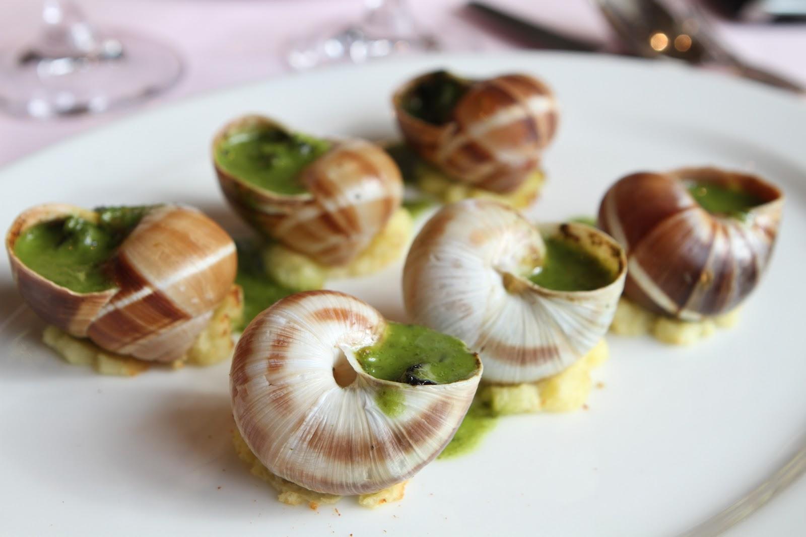 Diary of a growing boy mnsc burgundy trip day 3 le montrachet and la t che - Cuisiner les escargots de bourgogne ...