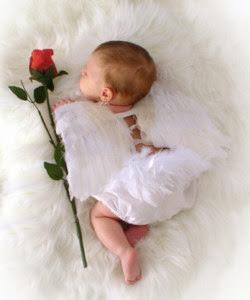 Fotos de bebês lindos