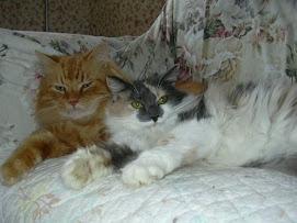 Reese & Karuna