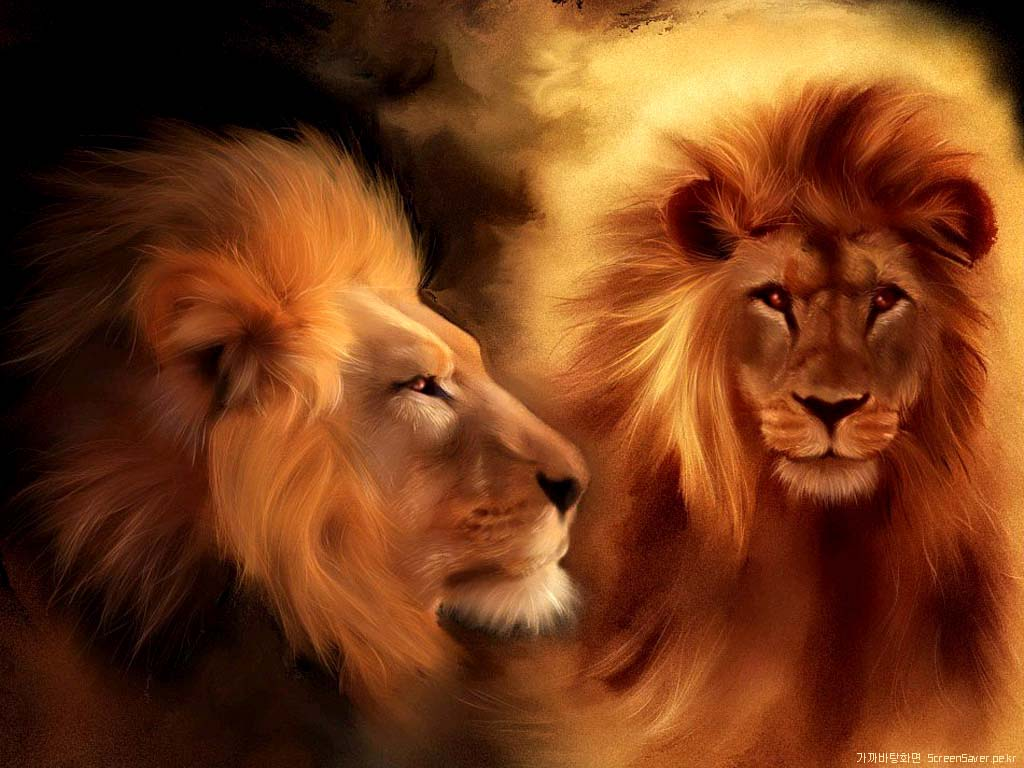 Animal Wallpapers Lion Wallpapers Mobile Wallpapers Pc Wallpapers Mobile Themes Pc Themes 15bf