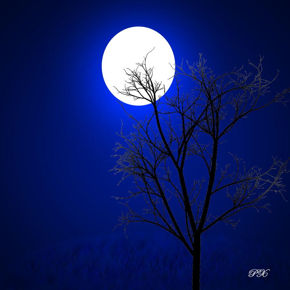moon2BWallappers2BDownloadw - Moon