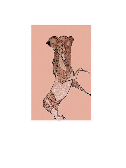 Serie: bestiario Técnica: mixta 34x50 cm