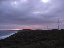 Wind farm...