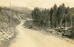 Carretera Trasandina